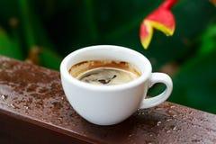Τρύγος φλυτζανιών καφέ Στοκ φωτογραφία με δικαίωμα ελεύθερης χρήσης