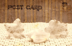 τρύγος ύφους καρτών Στοκ εικόνα με δικαίωμα ελεύθερης χρήσης
