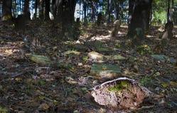 Τρύπα σε ένα νεκροταφείο Στοκ φωτογραφία με δικαίωμα ελεύθερης χρήσης