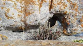 Τρύπα στο βράχο Στοκ φωτογραφία με δικαίωμα ελεύθερης χρήσης