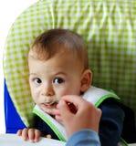 τρώει το uri Στοκ Εικόνες