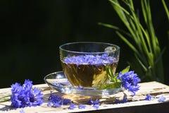 Τσάι από τα λουλούδια του cornflower Στοκ Φωτογραφίες