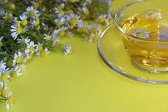 Τσάι από τα chamomile λουλούδια Στοκ Φωτογραφία