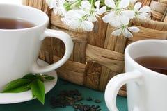 τσάι δύο Στοκ εικόνα με δικαίωμα ελεύθερης χρήσης