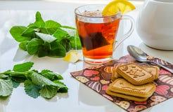 Τσάι λεμονιών με τα φύλλα μεντών και το βάλσαμο λεμονιών Στοκ εικόνα με δικαίωμα ελεύθερης χρήσης