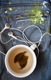 Τσάι και μουσική Στοκ εικόνες με δικαίωμα ελεύθερης χρήσης