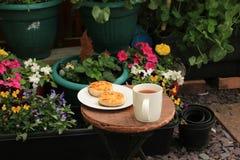 Τσάι και τηγανίτες στον κήπο Στοκ Φωτογραφία