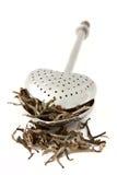 τσάι καρδιών infuser Στοκ Εικόνες