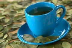 Τσάι κοκών Στοκ εικόνα με δικαίωμα ελεύθερης χρήσης