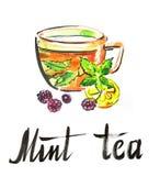 Τσάι μεντών Watercolor Στοκ Φωτογραφία