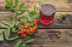 Τσάι με μια δέσμη της κόκκινης τέφρας βουνών Στοκ φωτογραφία με δικαίωμα ελεύθερης χρήσης