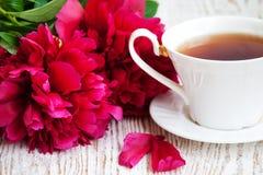 Τσάι με   ρόδινα peonies Στοκ φωτογραφία με δικαίωμα ελεύθερης χρήσης