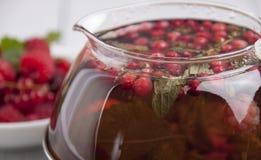 Τσάι με τα μούρα και τα χορτάρια Στοκ Εικόνες
