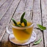 Τσάι με τα λογικά φύλλα Στοκ Φωτογραφία