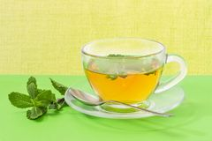 Τσάι με τη μέντα στο φλυτζάνι γυαλιού σε ένα πράσινο υπόβαθρο Στοκ φωτογραφίες με δικαίωμα ελεύθερης χρήσης