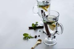 Τσάι με τη μέντα, την κανέλα και το λεμόνι Στοκ Εικόνα