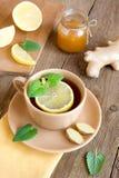 Τσάι με το λεμόνι, την πιπερόριζα, το μέλι και τη μέντα στοκ εικόνα με δικαίωμα ελεύθερης χρήσης