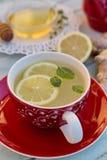 Τσάι πιπεροριζών με το λεμόνι και τη μέντα Στοκ φωτογραφίες με δικαίωμα ελεύθερης χρήσης