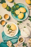 Τσάι πιπεροριζών με το λεμόνι, το μέλι και τη μέντα Στοκ Εικόνα