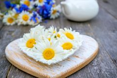 Τσάι που προετοιμάζεται από τα chamomile λουλούδια για το τσάι Τσάι από τα φυσικά χορτάρια διάστημα αντιγράφων Στοκ εικόνα με δικαίωμα ελεύθερης χρήσης
