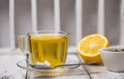 Τσάι πράσινο τσάι arvense φλυτζανιών equisetum εστίασης naturopathy εκλεκτικό τσάι έγχυσης αλογουρών γυαλιού βοτανικό Φύλλο μεντώ Στοκ εικόνα με δικαίωμα ελεύθερης χρήσης