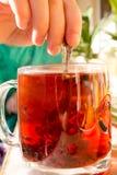 Τσάι σε μια διαφανή κούπα με τα καρυκεύματα Στοκ Εικόνες