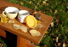 Τσάι στον κήπο φθινοπώρου στοκ φωτογραφία