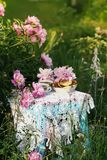 Τσάι στο ύφος χωρών στο θερινό κήπο Δύο φλυτζάνια του μαύρων τσαγιού και των τηγανιτών στο χειροποίητο πλεγμένο εκλεκτής ποιότητα στοκ φωτογραφίες με δικαίωμα ελεύθερης χρήσης