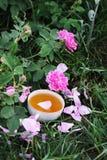 Τσάι στο ύφος χωρών στο θερινό κήπο στοκ εικόνες