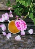Τσάι στο ύφος χωρών στο θερινό κήπο στο χωριό Φλυτζάνι Vintafe του πράσινου βοτανικού τσαγιού στους ξεπερασμένους ξύλινους πίνακε στοκ εικόνα