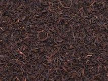 τσάι συγκομιδών στοκ φωτογραφία με δικαίωμα ελεύθερης χρήσης