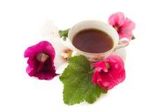 τσάι συμβαλλόμενων μερών Στοκ Εικόνες