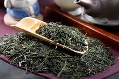 τσάι τελετής παραδοσιακό Στοκ Εικόνες