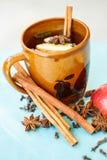 Τσάι της Apple με τα καρυκεύματα σε ένα φλυτζάνι Στοκ εικόνα με δικαίωμα ελεύθερης χρήσης