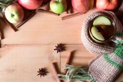 Τσάι της Apple με το ραβδί κανέλας, θερμό μαντίλι γλυκάνισου αστεριών andt Στοκ φωτογραφία με δικαίωμα ελεύθερης χρήσης
