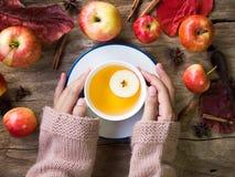 Τσάι της Apple στο άσπρο φλυτζάνι για την έννοια ποτών φθινοπώρου και πτώσης Στοκ Φωτογραφίες