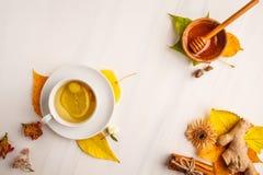 Τσάι φθινοπώρου με την πιπερόριζα και το λεμόνι σε ένα άσπρο υπόβαθρο, SPA αντιγράφων στοκ εικόνα