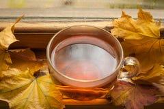 Τσάι φθινοπώρου Στοκ Φωτογραφίες
