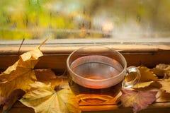 Τσάι φθινοπώρου Στοκ Εικόνα