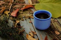 Τσάι φλυτζανιών φθινοπώρου στοκ φωτογραφίες με δικαίωμα ελεύθερης χρήσης