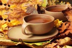 τσάι φλυτζανιών Στοκ εικόνα με δικαίωμα ελεύθερης χρήσης