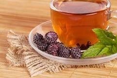 Τσάι φρούτων στο φλυτζάνι με το βατόμουρο Στοκ Εικόνες