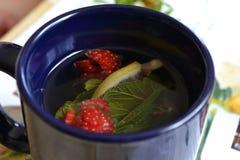 Τσάι φρούτων στοκ εικόνες