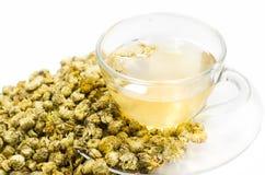 Τσάι χρυσάνθεμων στοκ εικόνα