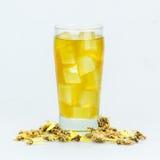 Τσάι χρυσάνθεμων Στοκ εικόνες με δικαίωμα ελεύθερης χρήσης