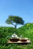 τσάι Στοκ Φωτογραφίες