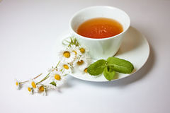 Τσάι Chamomile Στοκ φωτογραφία με δικαίωμα ελεύθερης χρήσης