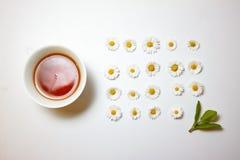 Τσάι Chamomile Στοκ Φωτογραφίες