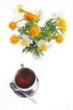τσάι globeflowers δεσμών daffodils Στοκ φωτογραφία με δικαίωμα ελεύθερης χρήσης