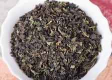 Τσάι Koporye (angustifolium Chamerion) Στοκ Φωτογραφία